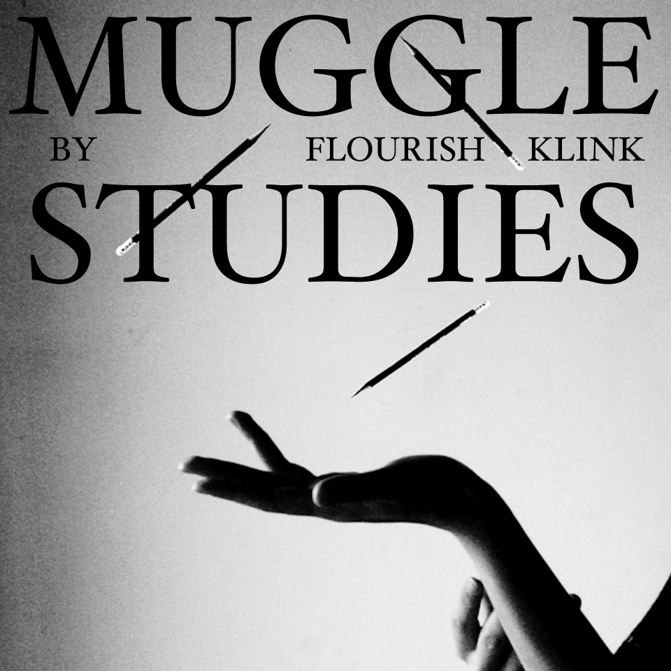 Image result for muggle studies